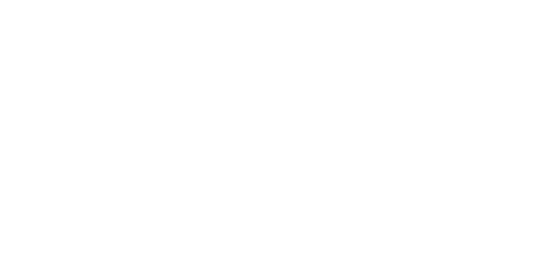 Animal Tower Battle